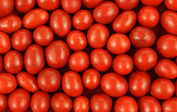 Close View Boston Baked Beans Royalty Free Stock Images