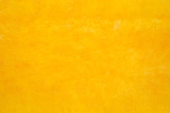 Close view butternut squash Royalty Free Stock Images