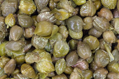 Close view of capers Stock Photography