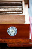 Close view on cedar wood humidor with cigars Stock Image