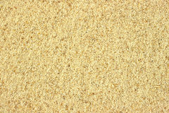 Close view of celery salt Royalty Free Stock Photo