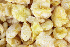 Close View Coated Flake Cereal. A close view of dry coated flake cereal Royalty Free Stock Photography