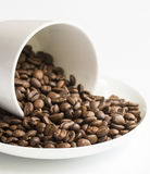Close View of Coffee Beans in Cup and Saucer Royalty Free Stock Photo