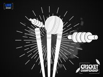 Close view of cricket ball hitting on the stumps. Close view of cricket ball hitting on the stumps, b&w concept based template design for Cricket Championship royalty free illustration