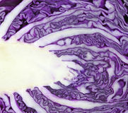 Close view of cut red cabbage Stock Images