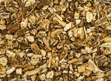 Close view of dried chopped dandelion root. A very close view of dried and chopped dandelion root stock photos