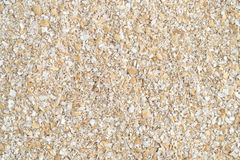 Close view of dry oat bran hot cereal Royalty Free Stock Photo