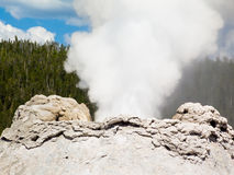 Erupting Castle Geyser Closeup Stock Images