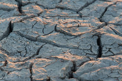 Close view of extremely dry soil with fissures Royalty Free Stock Photography