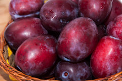 Close view of fresh plums on the wooden board Royalty Free Stock Photo