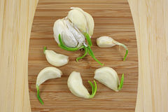 Fresh Garlic Cloves up Close Stock Photo