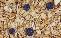 Close View Granola Blueberry Banana Mix Royalty Free Stock Image