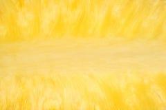 Close view of halved pineapple Stock Photos