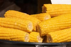 close view on Homemade golden corn cob with butter and salt on table royalty free stock photo