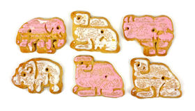Close View Iced Animal Cookies Royalty Free Stock Photography
