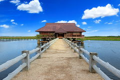 Close view of a lake wooden house with pier and blue sky country Royalty Free Stock Photo