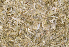 Close view of oatstraw herb. A very close view of dried and shredded oatstraw herb royalty free stock image