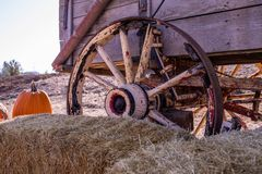 Old rustic wagon wheel, orange pumpkin and a straws bale stock image