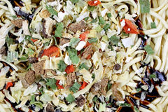 Teriyaki Noodles Raw Spicy Sauce Vegetables. A close view of  prepared teriyaki noodles and vegetables Stock Photography