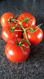 Isolated vine tomatoes Stock Images