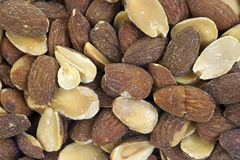 Close view roasted almonds Royalty Free Stock Photography