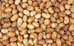 Close view of roasted soy nuts Royalty Free Stock Photography