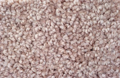 Close view of rose carpeting Royalty Free Stock Images