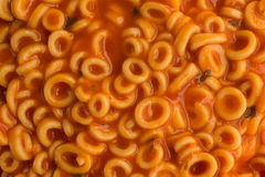 Close view of round spaghetti in a tomato sauce Royalty Free Stock Photography