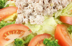 Close view salad Stock Photography
