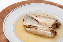 Close view of sardines served on the plate Stock Image