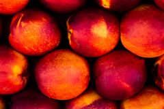 Close view of several ripe peaches of vibrant colors. Symmetric pattern formed by tropical fruits stock photography