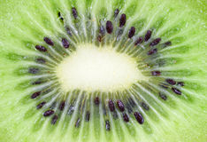 Close view of sliced kiwi fruit Stock Photography