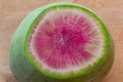 Close view of a sliced watermelon radish in shades of green and magenta. Horizontal aspect royalty free stock photography