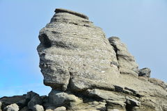 Close view of the Sphinx from Romania. Royalty Free Stock Image