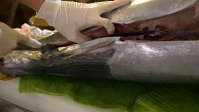 Close view of splitting huge tuna fish. Shot with a Sony RX10 IV fps 29,97 4k stock footage
