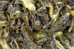Close view turnip greens Stock Images