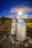 Close view of two aluminum milk cans on the roadside in a county Royalty Free Stock Photos