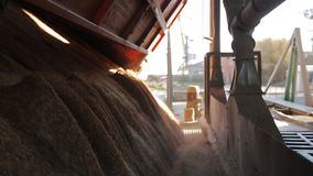 Close view of unloading grain trucks at elevator on elevating hydraulic platform unloader. Grain crops transshipment at. Close view of unloading grain trucks at stock video footage