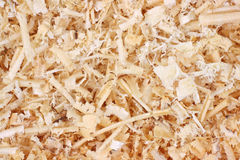 Close view of wood shavings Royalty Free Stock Photography