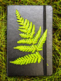 Closed black notebook with a green fern leaf attached. Taking notes in the nature conceptualisation, closed black notebook lying on a grass with a green fern Stock Photography