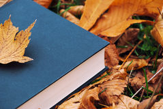 Closed book with autumn leaf Royalty Free Stock Photo
