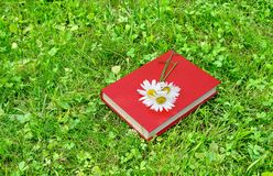 Closed book and chamomile on grass stock photos