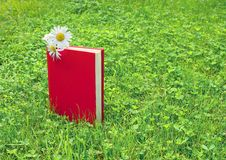 Closed book and chamomile on grass Royalty Free Stock Photography