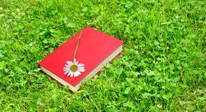 Closed book and chamomile on grass Royalty Free Stock Photo