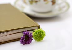 Closed book with flowers. Brake in reading book - closed hard-back book with two small flowers as a book mark and cup of tea in the background Stock Photo