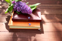 Free Closed Books Outdoor. Knowledge Is Power. Book In A Forest. Book On A Stump Stock Image - 87130311