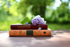 Closed books outdoor. Knowledge is power. Book in a forest. Book on a stump Stock Photography