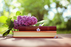 Closed books outdoor. Knowledge is power. Book in a forest. Book on a stump Royalty Free Stock Images