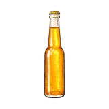 Closed bottle of cold beer, sketch style vector illustration Stock Photo