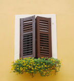 Closed Brown Shutters, Izola Stock Photos